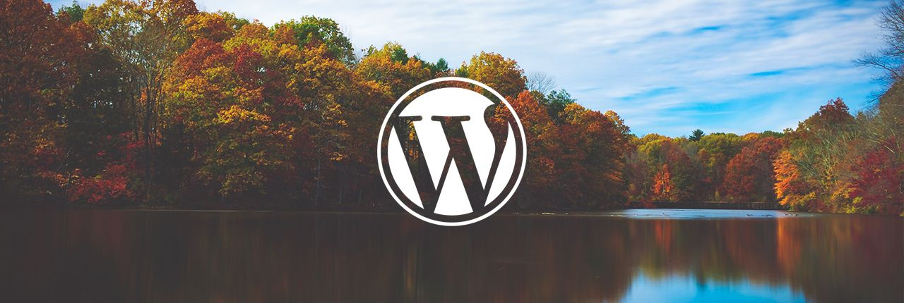 Estadísticas de Wordpress; Estadísticas Wordpress